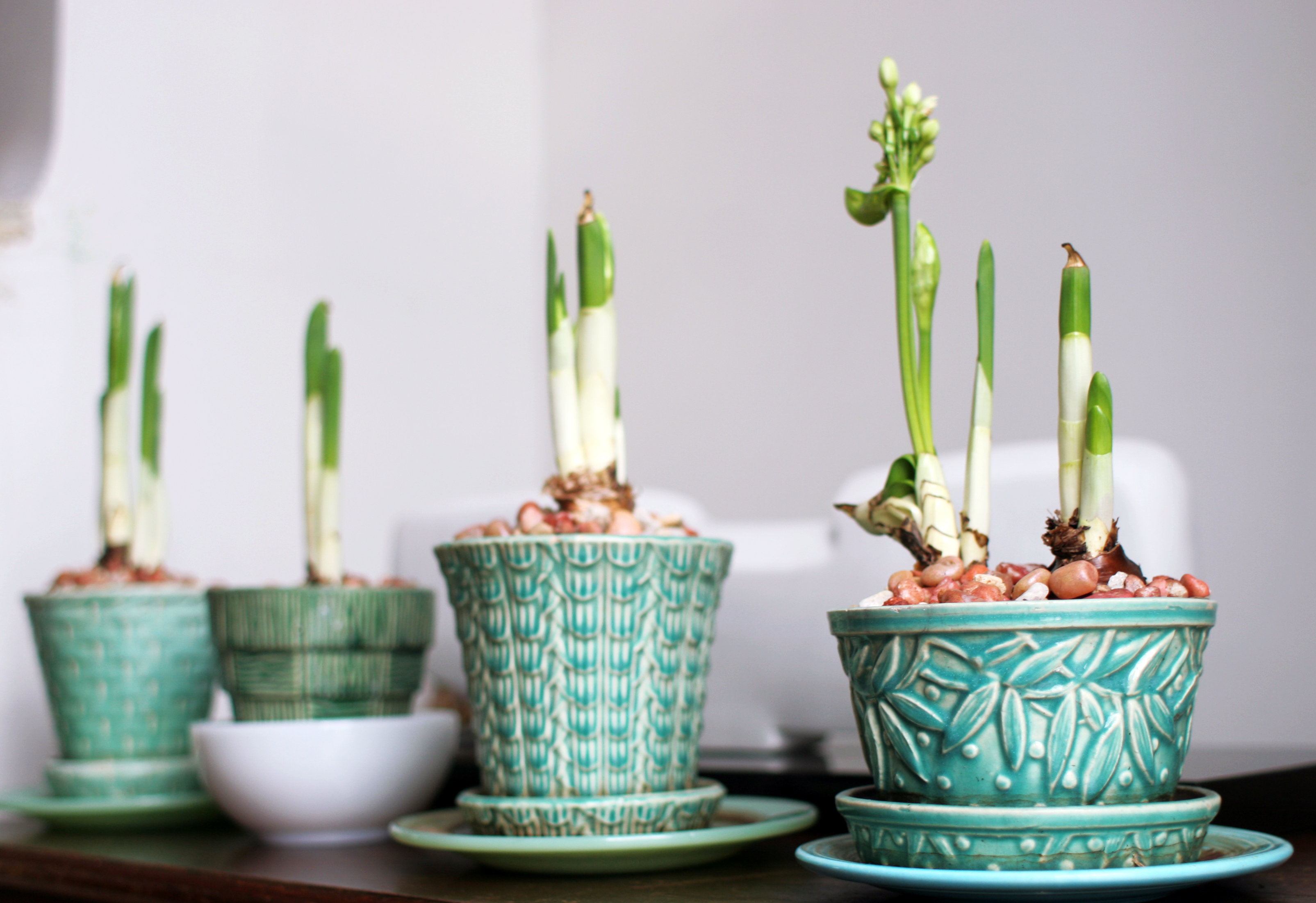 flea market finds: vintage flower pots | domesticspace