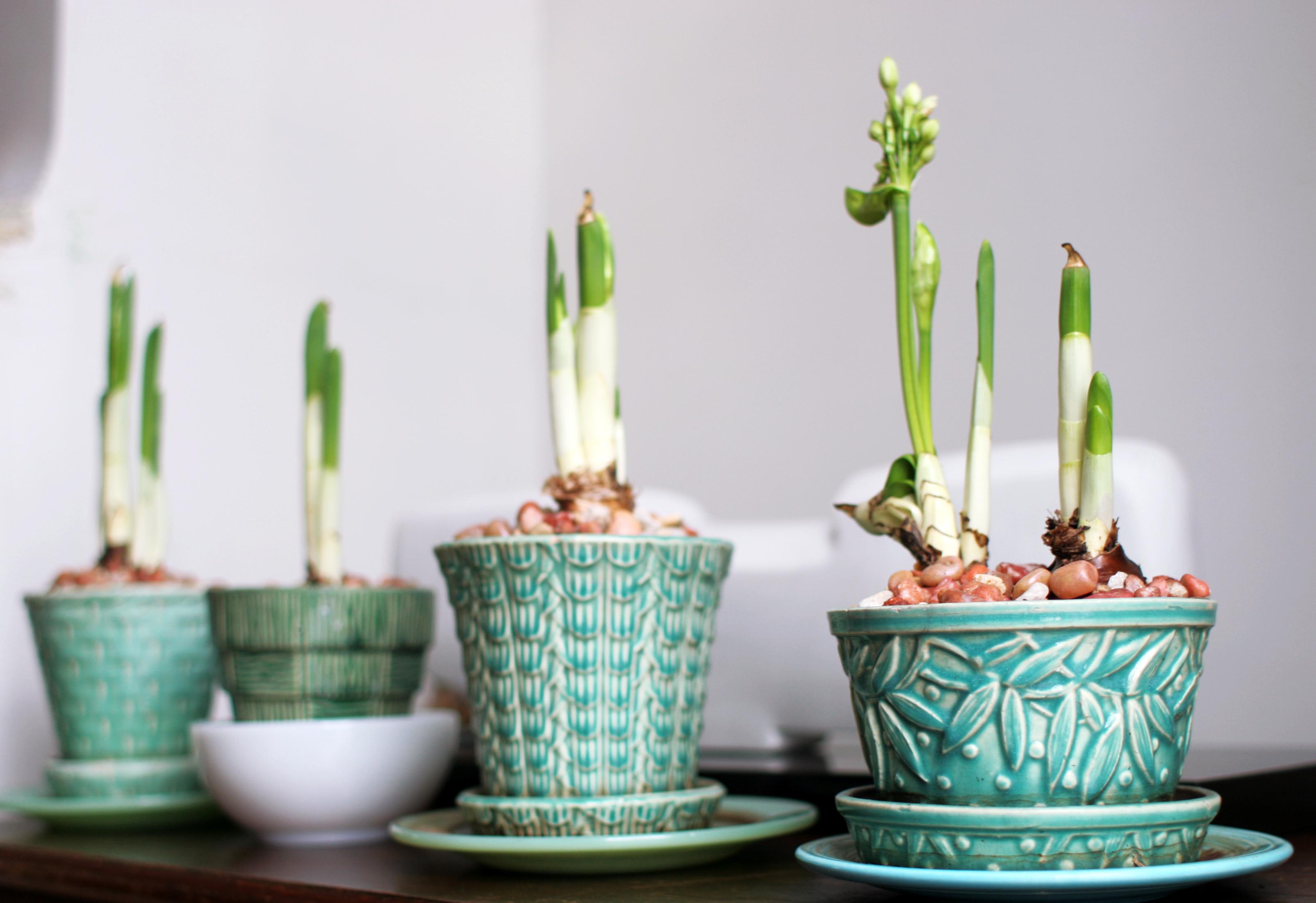 Ebay vintage flower pot