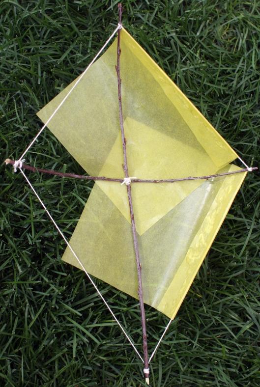 Kites3
