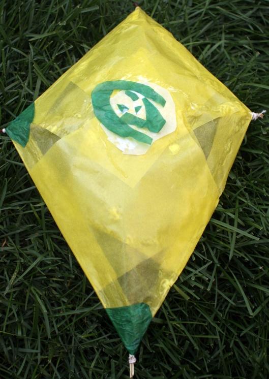 Kites6