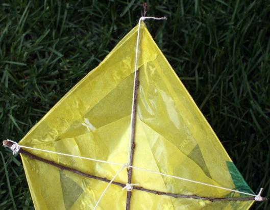Kites8