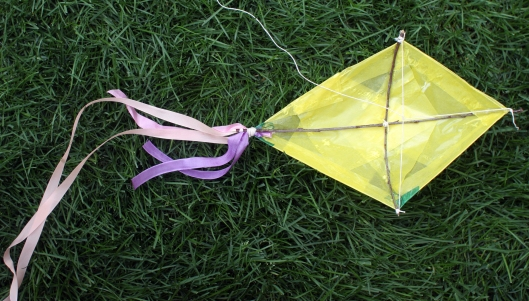Kites9